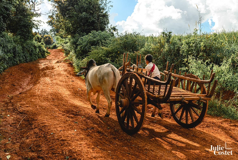 Routes de Birmanie